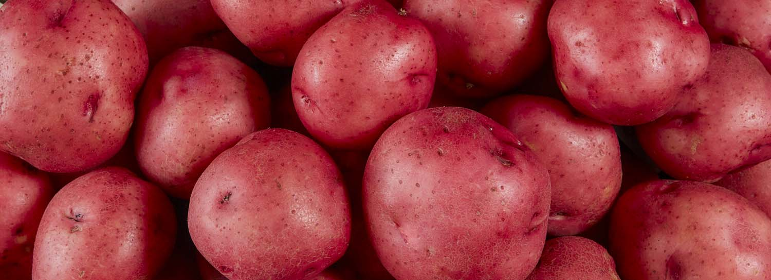 Seeing a red…potato education.